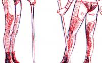 577 - La part de l'imaginaire : Carole, qui eût été les plus belles jambes de la police
