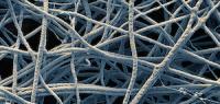579 - La nanotechnologie nous pousse-t-elle vers le transhumanisme ?