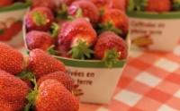 Le musée de la fraise