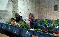 Une coopérative de Floreffe résiste à l'industrialisation de l'alimentation en renforçant les petits producteurs locaux !